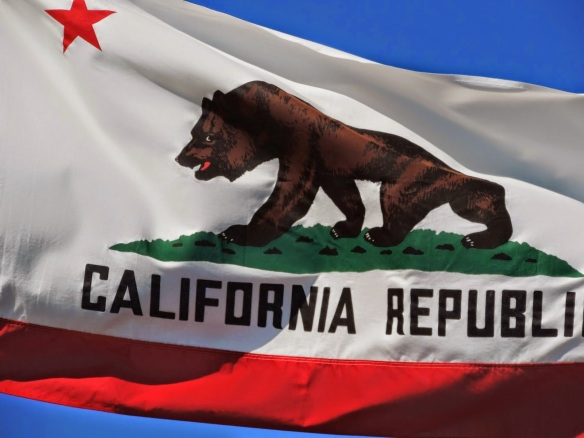 You've got to admit, the proposed flag's really cool! Stolen from Yes, California's Facebook page https://www.facebook.com/YesCalifornia/